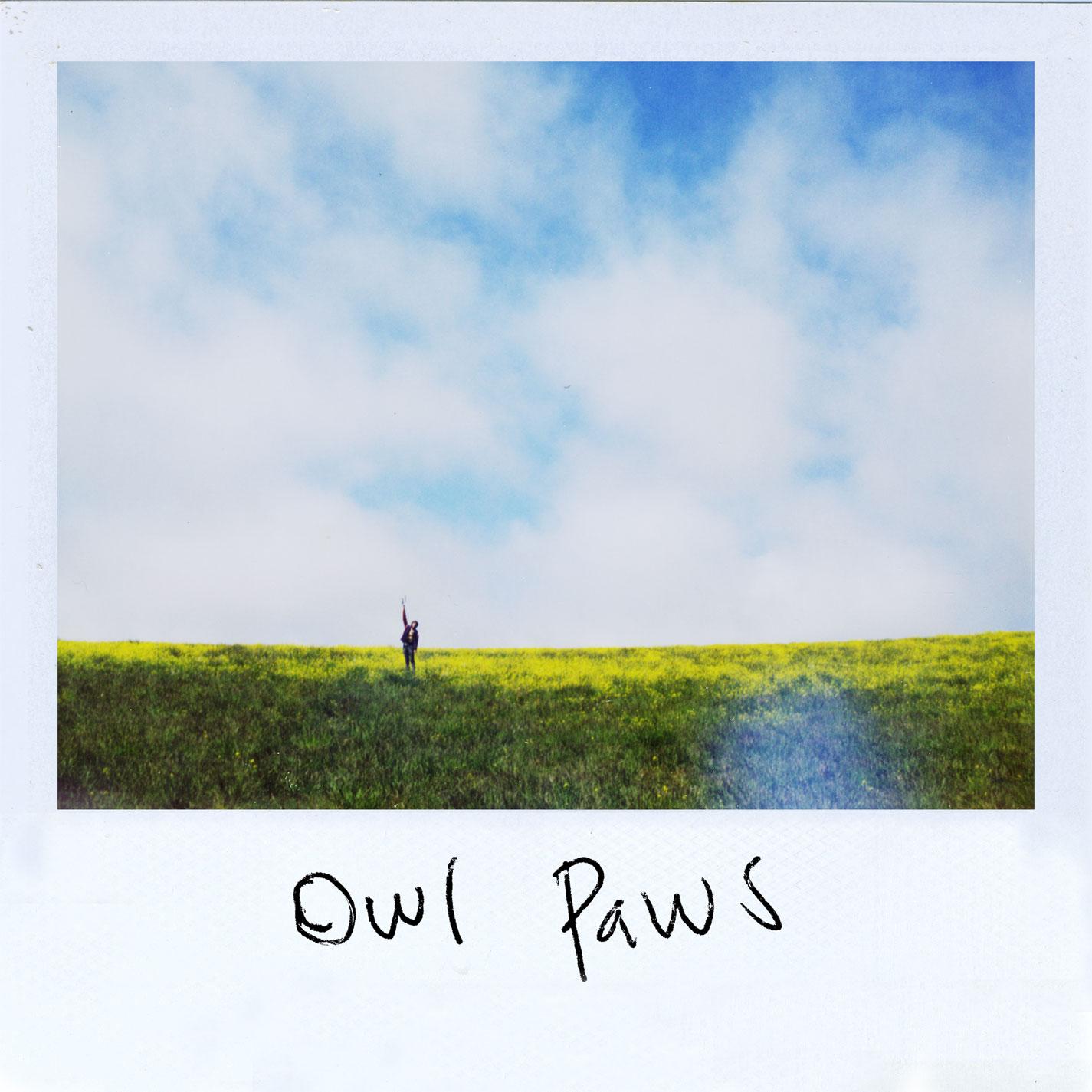 Owl Paws - Owl Paws