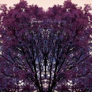 Treemo_Understory