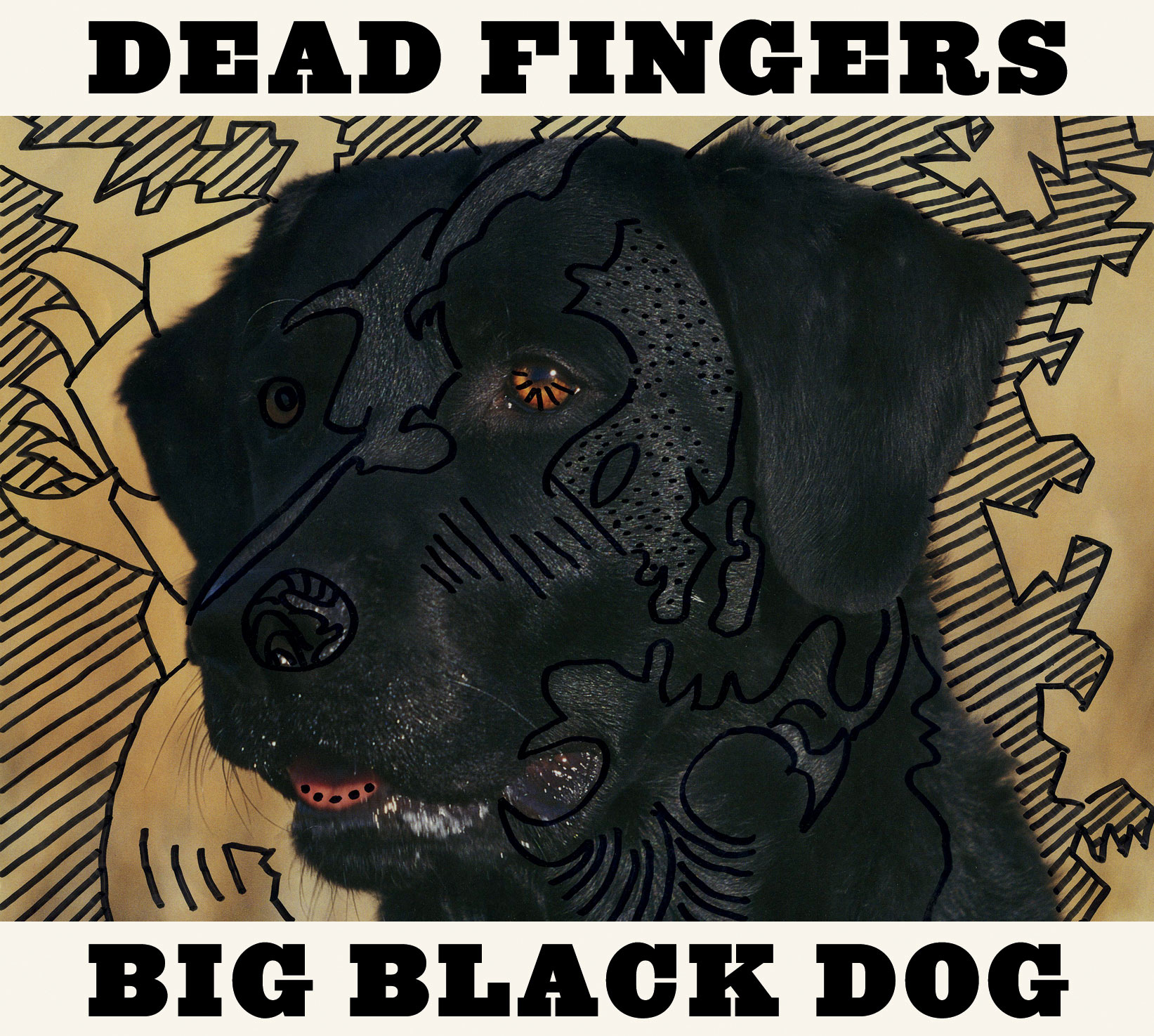 Dead Fingers Big Black Dog