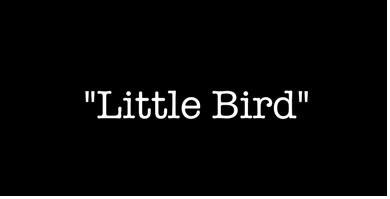 Michael Gray - Little Bird