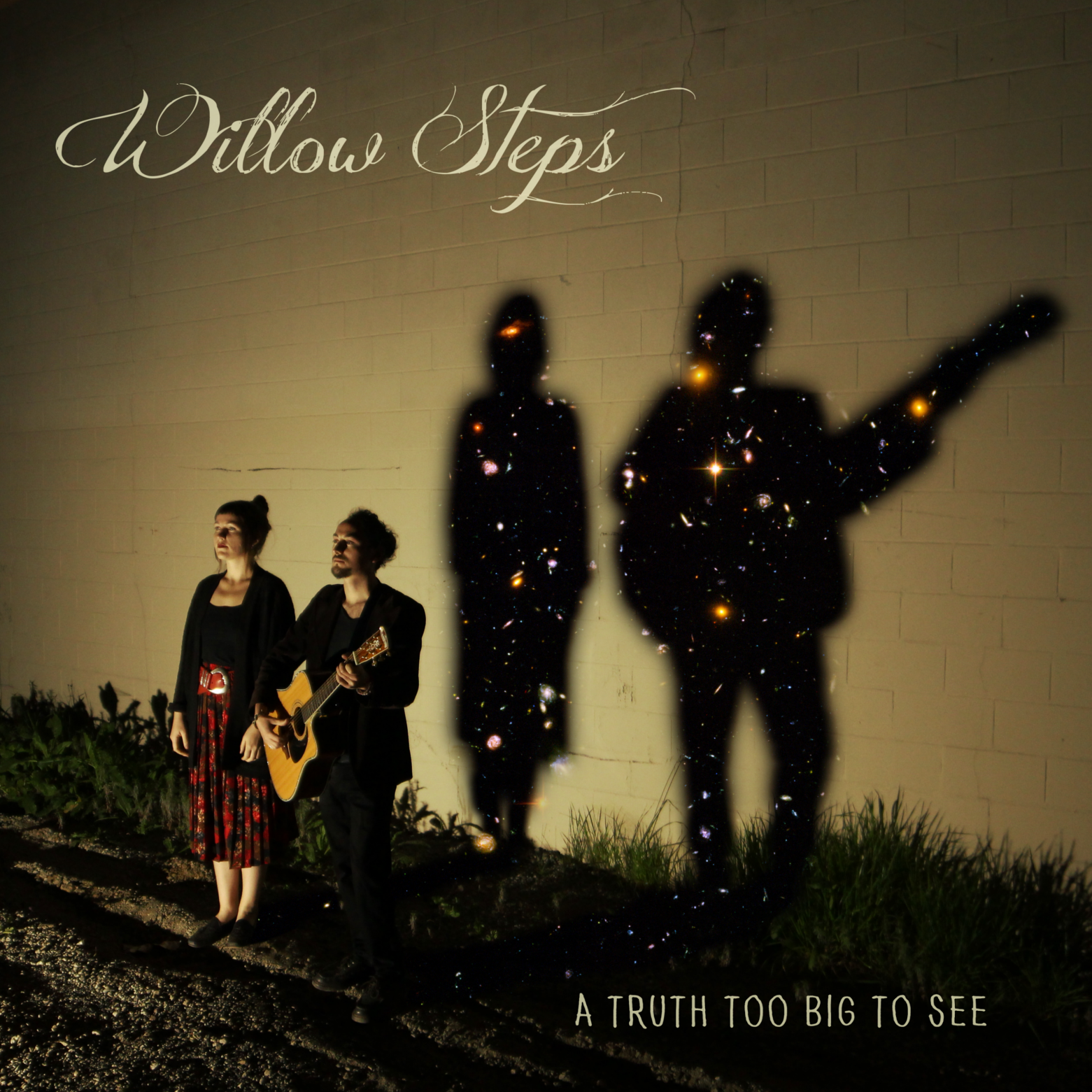 Willow Steps - A Truth Too Big to See - cover